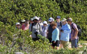Uncruise naturalist Galapagos
